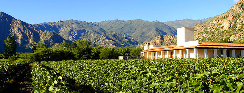 Vi�as de Cafayate Wine Resort. Cafayate, Salta.